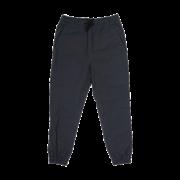 Брюки Anteater Simple joggers-gray